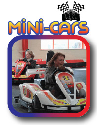 mini cars go karts
